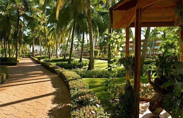 фотографии отеля Iberostar Punta Cana изображение №11
