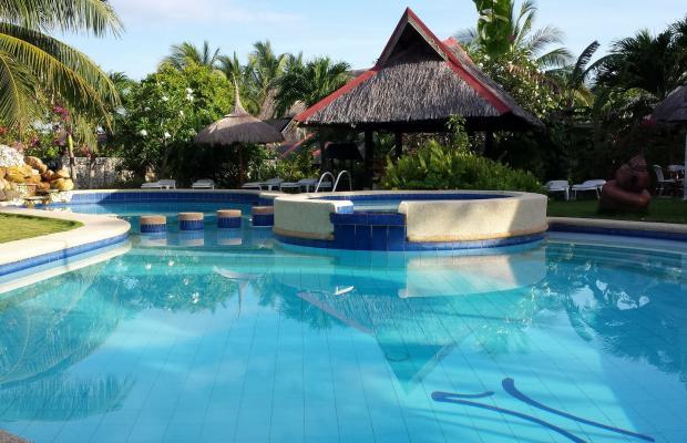 фотографии Dolphin House Resort Moalboal изображение №36