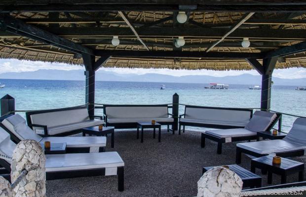 фото Dolphin House Resort Moalboal изображение №26