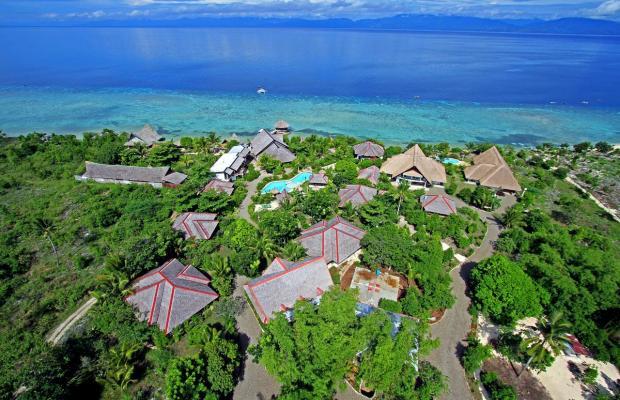 фото Dolphin House Resort Moalboal изображение №18