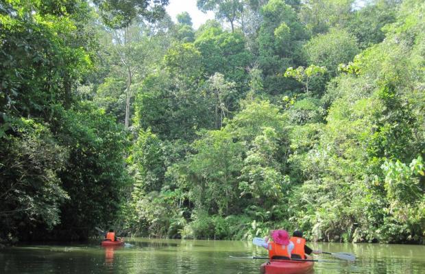 фото Borneo Tropical Rainforest изображение №10