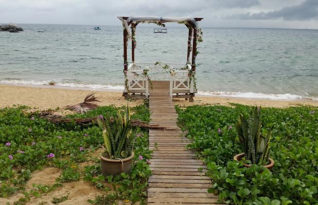 фотографии Paya Beach Resort изображение №4