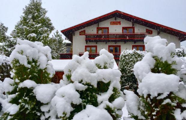 фотографии Pension Pinzgauerhof изображение №4