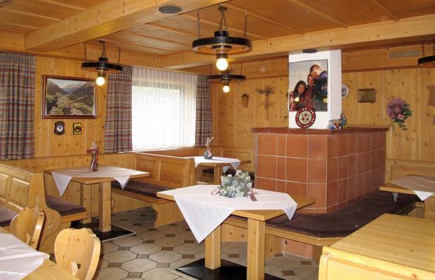 фотографии отеля Haus Pitzwald изображение №15