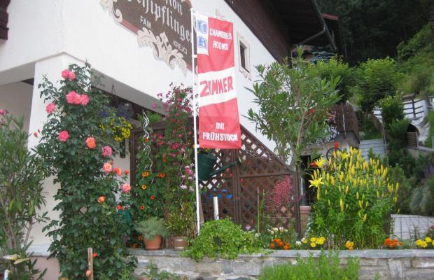 фото отеля Pension Schipflinger изображение №5