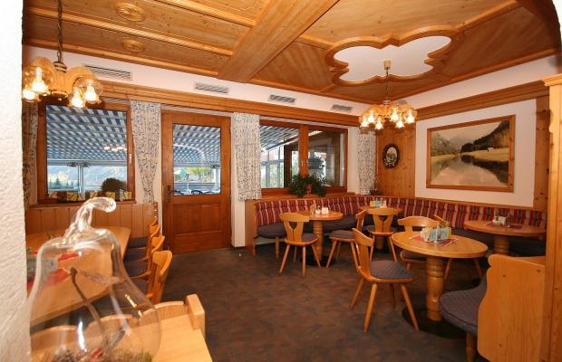 фотографии Cafe Perner изображение №12