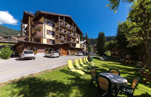 фото отеля Hotel Alpina изображение №37