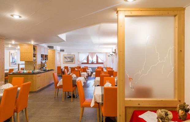 фотографии отеля Hotel Alpina изображение №7
