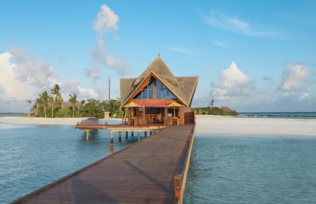 фото отеля Dhigufaru Island Resort изображение №45