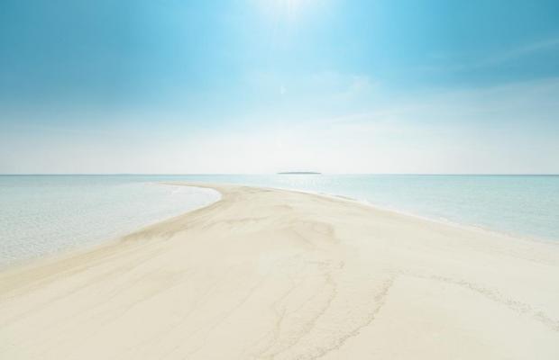 фото отеля Dhigufaru Island Resort изображение №25