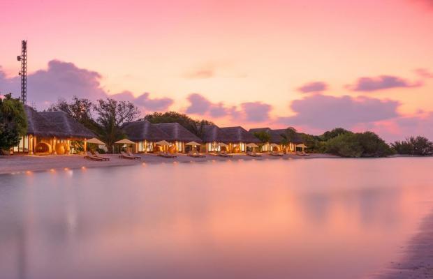 фотографии отеля Dhigufaru Island Resort изображение №23