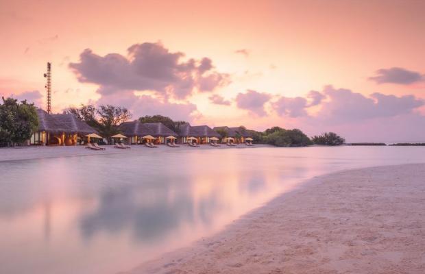 фотографии отеля Dhigufaru Island Resort изображение №7