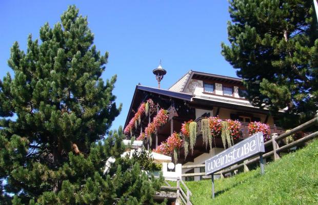 фото Hotel Villa Wilma изображение №22