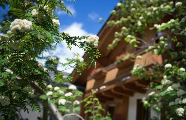 фото отеля Steinbock изображение №21