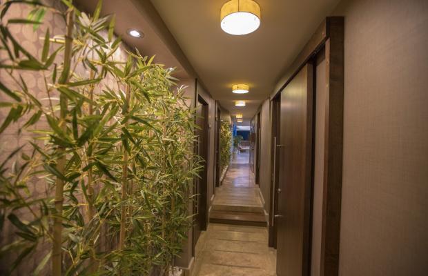 фотографии отеля Regnum Apart Hotel & Spa (Регнум Апарт Хотель & Спа) изображение №15