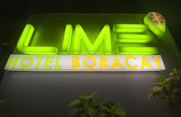 фото Lime изображение №6