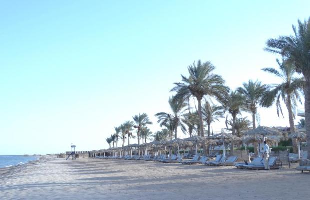 фотографии отеля La Playa Beach Resort Taba (ex. Sol Taba Red Sea; Sonesta Beach Resort Taba) изображение №19
