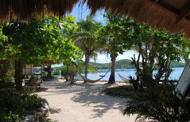 фотографии отеля Coral Bay Beach and Dive Resort изображение №31