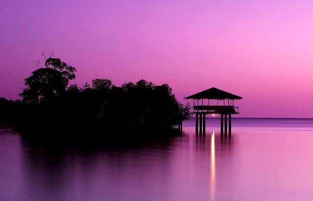 фотографии Dos Palmas Arreceffi Island Resort изображение №32