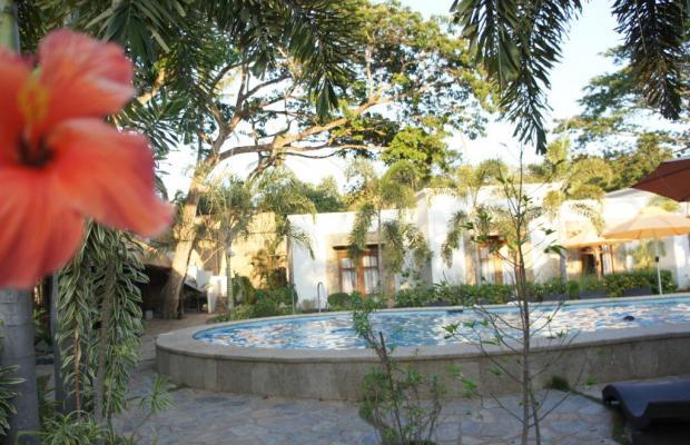 фотографии отеля Acacia Tree Garden Hotel изображение №3