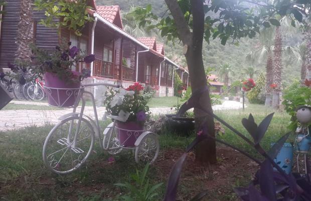 фотографии Club Sun Village изображение №4