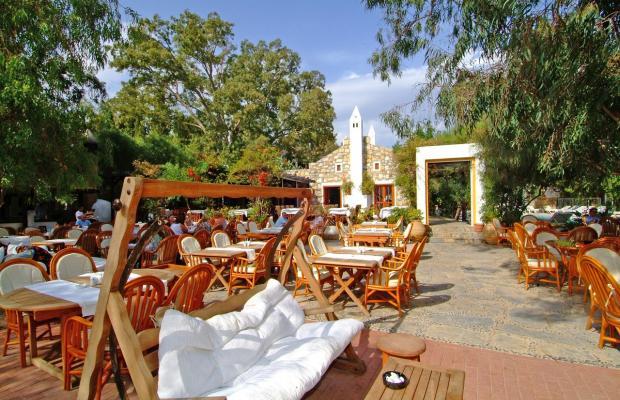 фото отеля Okaliptus изображение №9
