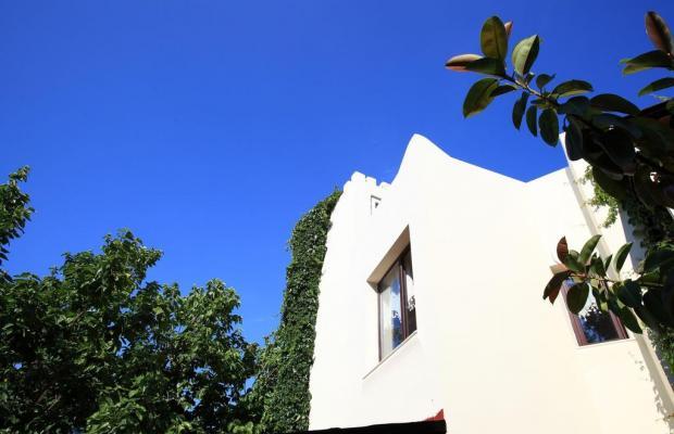 фото отеля Paloma изображение №5