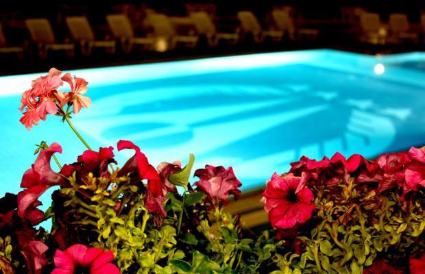 фотографии отеля Mustafa изображение №3