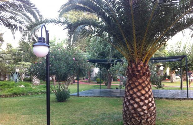 фото отеля Club Lookea Maxima Bay (ex. Club Hotel Maxima; Sun Club Biltur) изображение №21