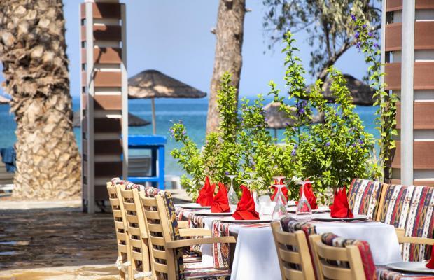 фото отеля Ephesia Holiday Beach Club изображение №41