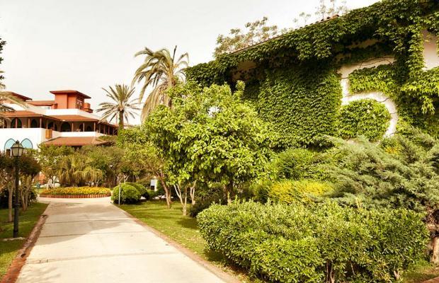 фотографии Belconti Resort изображение №60