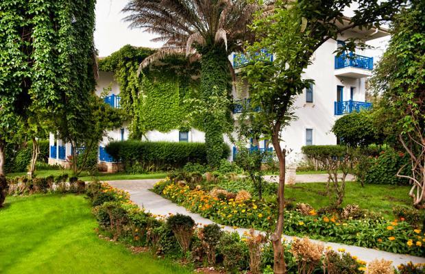 фотографии Belconti Resort изображение №12