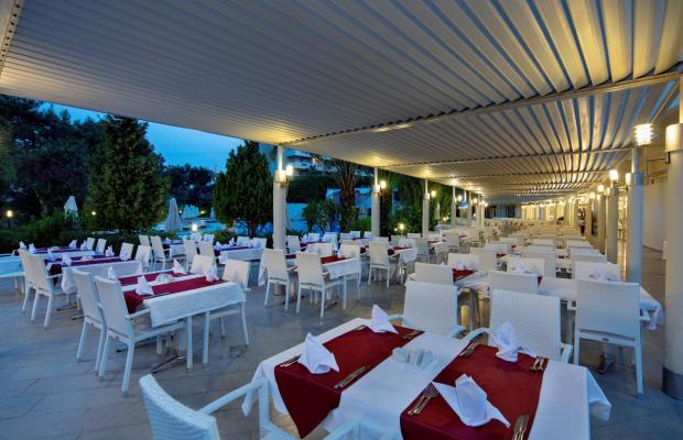 фотографии отеля Alara Star изображение №7