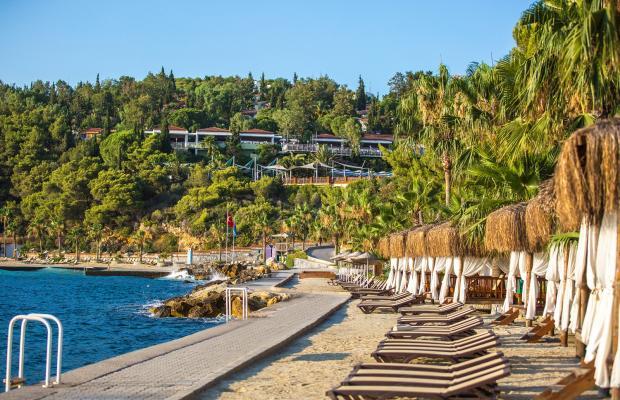 фотографии отеля Pine Bay Holiday Resort изображение №59
