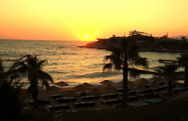 фотографии Pine Bay Holiday Resort изображение №44