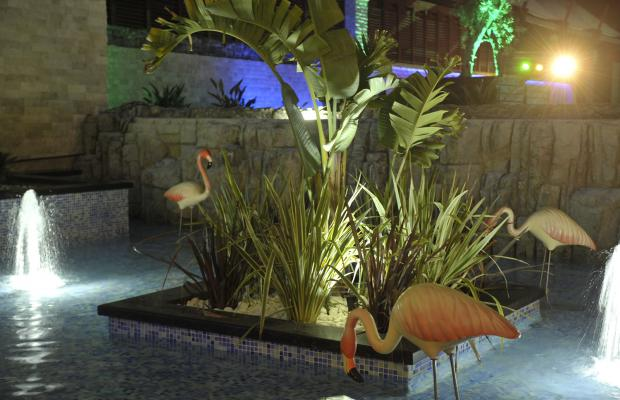 фотографии Adenya Hotel & Resort изображение №84