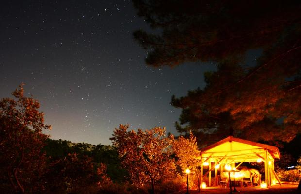 фотографии отеля Dionysos Hotel изображение №31