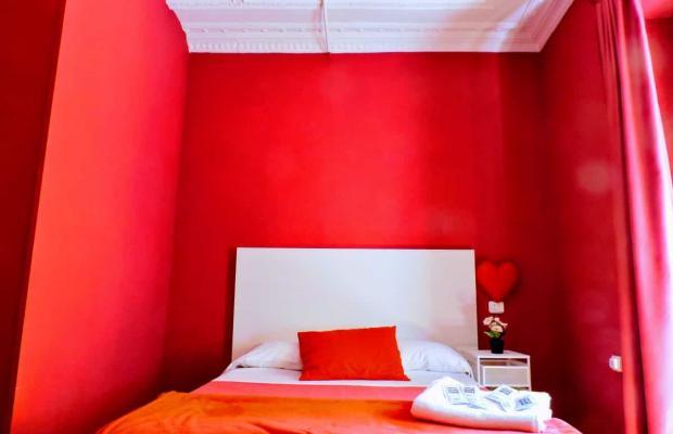 фотографии Red Nest изображение №24