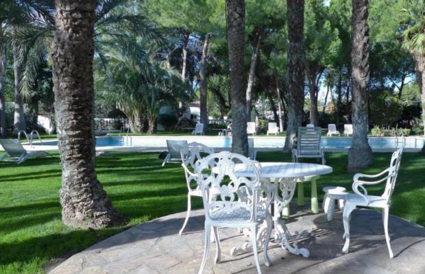 фотографии отеля El Oasis Resort изображение №19