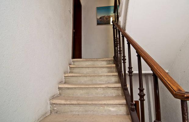 фото La Fenice & Des Artistes изображение №6