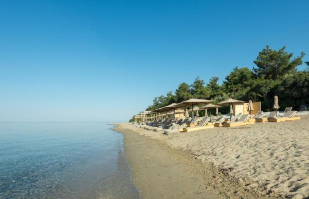 фотографии отеля Trikorfo Beach изображение №15