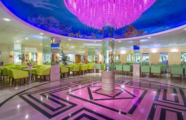 фотографии отеля Servigroup Calypso изображение №7