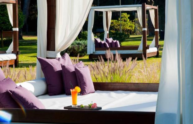 фото отеля Sofitel Rabat Jardin Des Roses (ex. Rabat Hilton) изображение №9