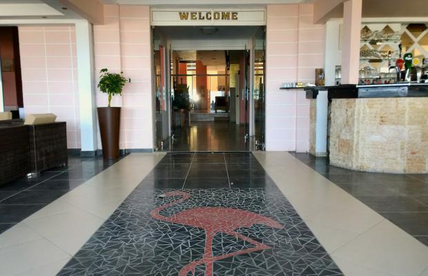 фотографии Flamingo Beach Hotel изображение №8