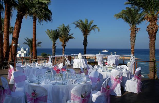 фотографии отеля Golden Coast Beach Hotel изображение №31