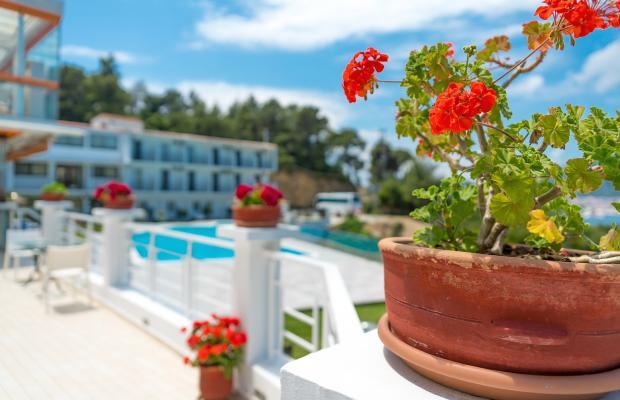 фотографии отеля Hotel Punta изображение №7