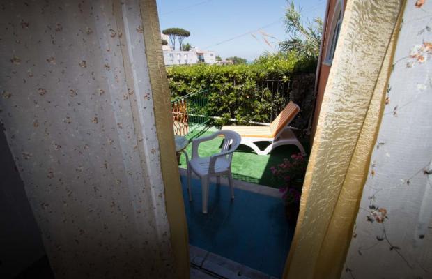фото Aragonese изображение №30