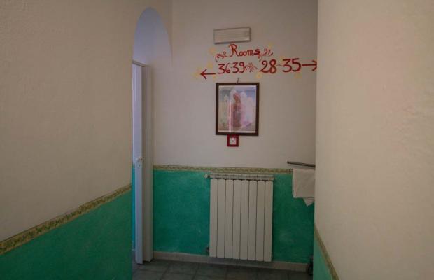 фото Aragonese изображение №18