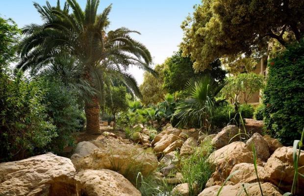 фотографии Movenpick Resort & Spa Dead Sea изображение №28