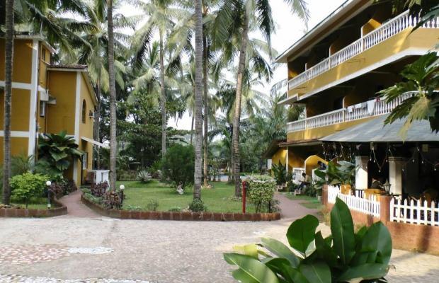 фото Palm Resort изображение №18
